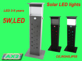 Solar Sensor Garden LED Light with CE Certificate