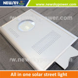 Bright All in One Solar Garden LED Light 30W