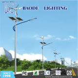 Customized Module 80/100W Solar LED Street Light (BDTYN80)